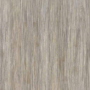 Salsa-Art-Shades-of-Grey